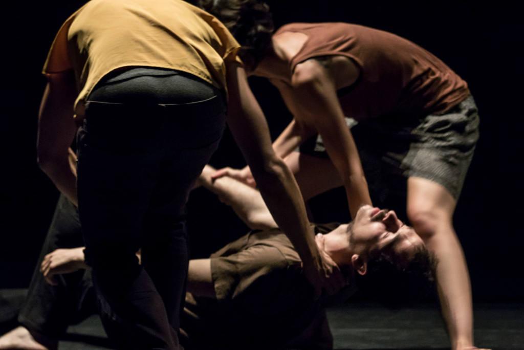 Fattoria Vittadini - Festival Mirabilia 2015 - ph Andrea Macchia